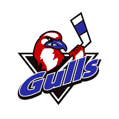 Long Island Gulls logo